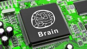 Breakthroughs in Understanding the Human Body